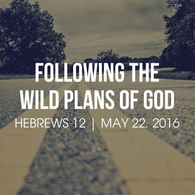 Following the Wild Plans of God