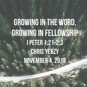Growing in the Word, Growing in Fellowship