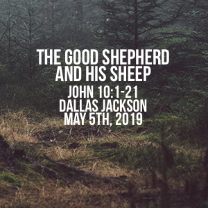 The Good Shepherd & His Sheep